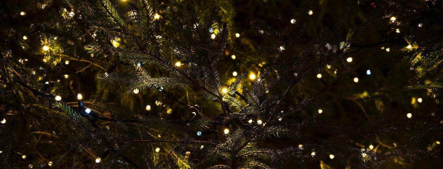 Kerstkransjes 2019